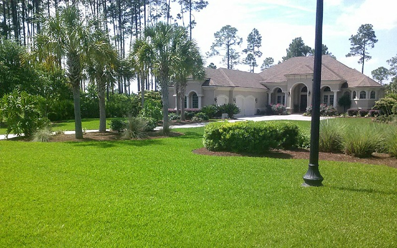 Beautiful residential home lawn services from Scientific Turf